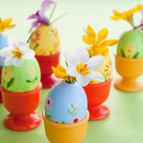 Crocus in painted easter eggs Stock Photography