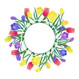 Crocus tulip flowers. Greeting card with spring flowers.Vector illustration with,purple ,yellow crocuses and red tulips on a white background.Greeting card for Stock Photo
