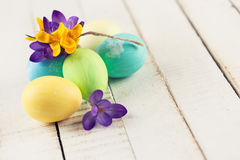 Crocuses and easter eggs Royalty Free Stock Image