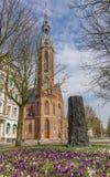 Crocusses na frente da catedral de Jozef em Groningen Fotos de Stock