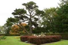 Croft Castle garden in Autumn Stock Image