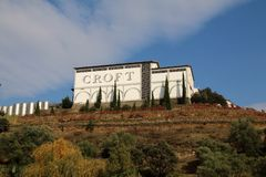 Croft vineyard on the banks of the River Douro. Croft vineyard in autumn on the port producing banks of the river Douro. Quinta da roeda, Vila Real district stock photo