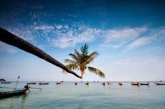 Palma e barche sulla spiaggia tropicale, Tailandia fotografia stock
