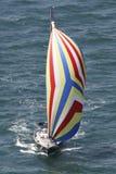 Crogiolo di vela con lo spinnaker Fotografia Stock