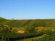 Crogiolo romano ricostruito di vino Immagini Stock Libere da Diritti