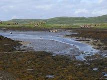 Croig estuary, Isle of Mull Royalty Free Stock Photos
