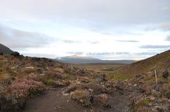 Croisement alpestre de Tongariro Image stock