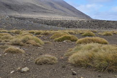 Croisement alpestre de Tongariro Images libres de droits