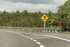 Croisement d'avertissement d'orignaux d'une attention de diamant de panneau routier jaune du trafic, signalé à côté de la route Q images libres de droits