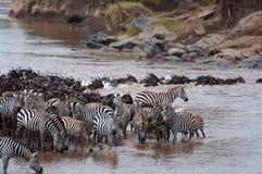 Croisement de fleuve de Mara Photographie stock