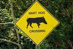 Croisement de porc de verrue de poteau de signalisation Images libres de droits