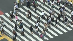 Croisement piétonnier occupé de rue de ci-dessus - Shibuya, Tokyo Japon banque de vidéos