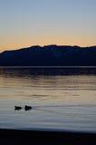 Croisière de coucher du soleil Images stock