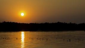 Croisière de coucher du soleil en rivière Zambesi, Zimbabwe, Afrique Photos stock