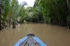 Croisière par le delta du Mékong Photos stock