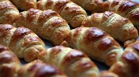 Croissant. Many fresh croissant side by side royalty free stock photo