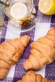 croissant Immagine Stock Libera da Diritti