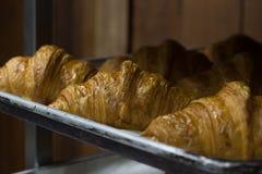 Croissant al forno buono sul vassoio Fotografia Stock Libera da Diritti