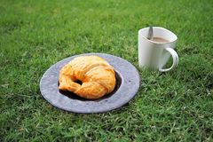 Croissant and coffee were served in the garden. Croissant in the dish was served in the morning Royalty Free Stock Image