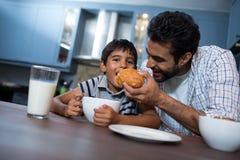 Croissant de alimentation d'homme au fils Photographie stock