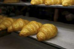 Croissant di recente al forno nel forno di cottura Fotografie Stock