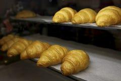 Croissant di recente al forno nel forno di cottura Immagini Stock