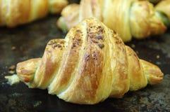 Croissant fresco immagini stock