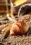 Croissant fresco con grano organico fotografia stock