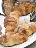 Croissant in mand op witte achtergrond Stock Fotografie