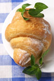 Croissant on plate Royalty Free Stock Images