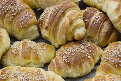 Croissant rolls Royalty Free Stock Image