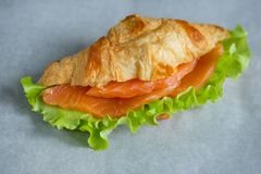 Croissant with salmon. And salad Stock Image
