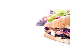 Free Croissant Sandwich With Salted Salmon On Plate, Royalty Free Stock Images - 56147529