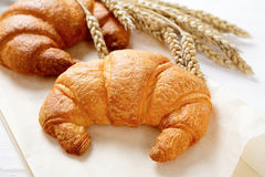 Croissant with spikelets of wheat on paper Royalty Free Stock Photos