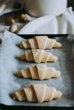 Croissant su uno strato di cottura Immagine Stock