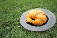 Croissant was served in the garden. Croissant in the dish was served in the morning Stock Photography