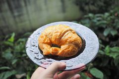 Croissant was served in the morning. Croissant in the dish was served in the morning Royalty Free Stock Image