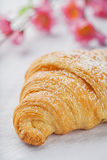 Croissant on white Royalty Free Stock Photo