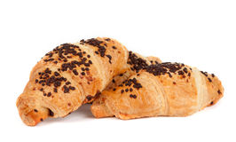 Croissants with chocolate Stock Photography