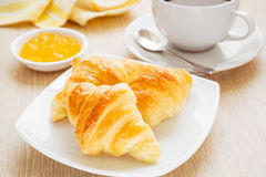 Croissants and a coffee cup Royalty Free Stock Photography