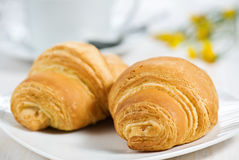 Croissants with cup of tea Royalty Free Stock Photo