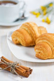 Croissants with cup of tea and cinnamon Stock Image