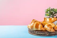 Croissants di recente cotti Fotografia Stock Libera da Diritti