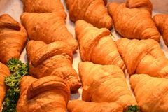 Croissants in the dish stock photography