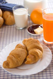 Croissants for healthy french breakfast Royalty Free Stock Photo