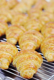 Croissants uit oven Stock Foto's