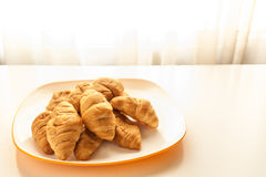 Croissants in a white plate. Mini croissants in a plate on a table with natural light Royalty Free Stock Photo