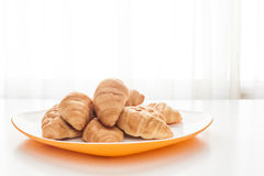 Croissants in a white plate Royalty Free Stock Images