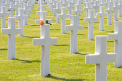 Croix blanches du cimetière et du mémorial américains de la Normandie de la deuxième guerre mondiale Image stock