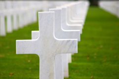 Croix blanches sur une herbe verte Image stock